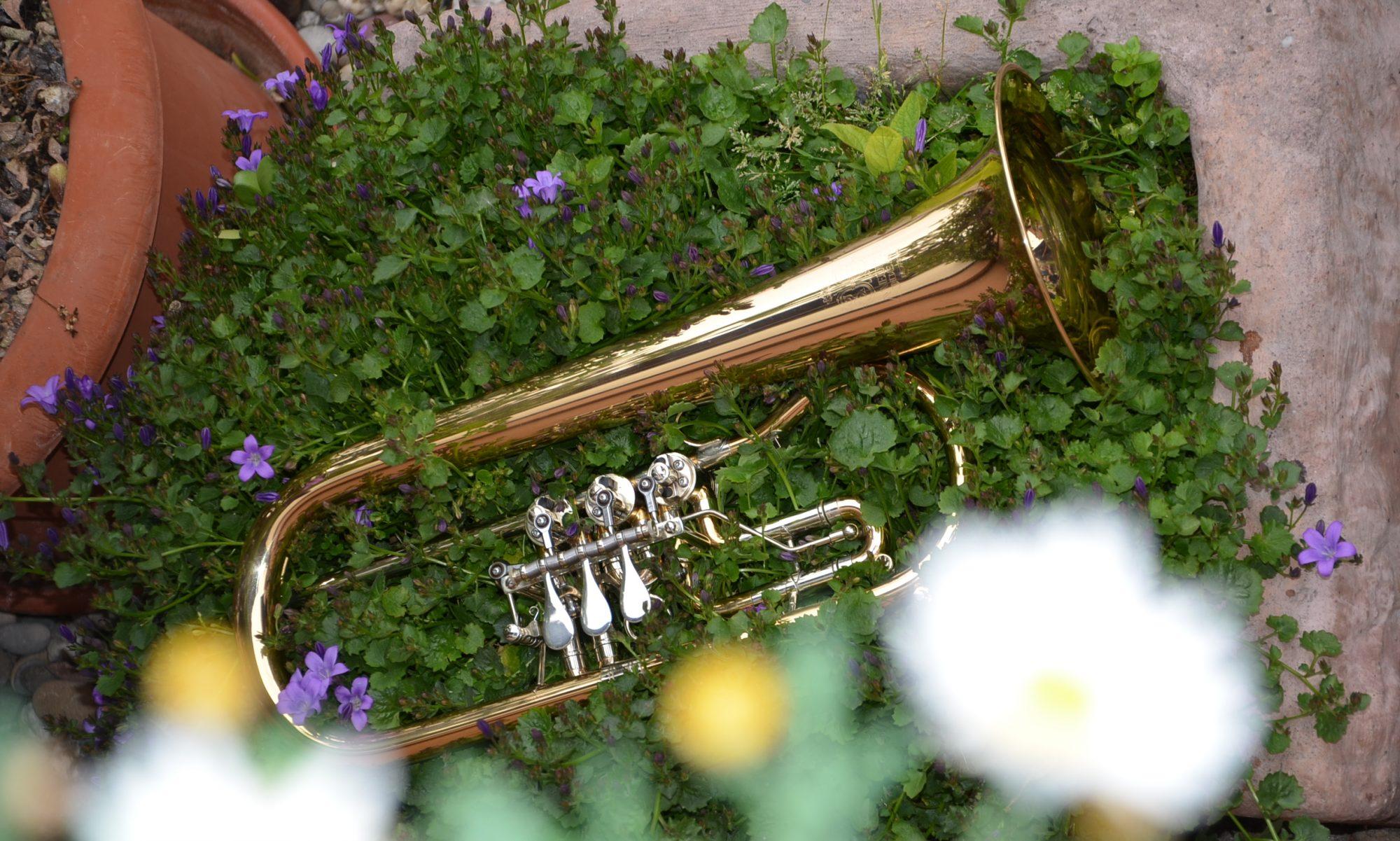 Musikverein Altschweier e.V.